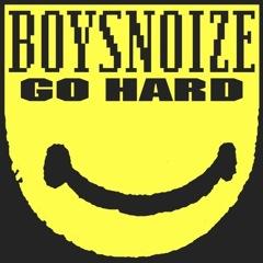 boysnoizeGOhard
