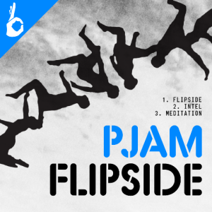 PJam - Flipside Artwork
