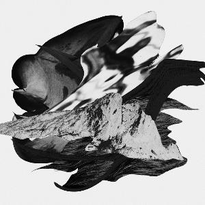 Morcee 'Black Hole' (Tight Knit Records)