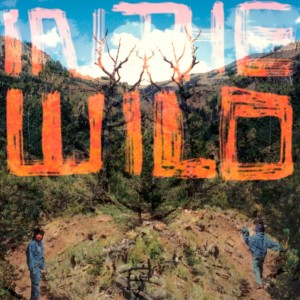 FaltyDL 'Do Me' from the forthcoming album 'In The Wild'